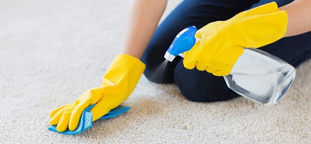 Different Types of Carpet Stains and How to Treat Them